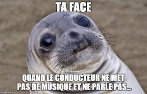 awkward seal covoiturage