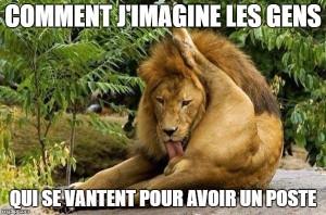 lion vantard